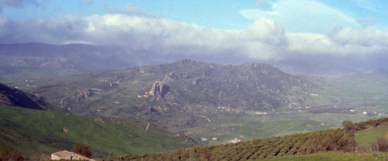 monte-alburchia-olio-biologico-sicilia-64