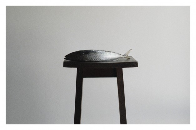 monte-alburchia-olio-biologico-sicilia-midge-wattles-offertorio-f-627x418