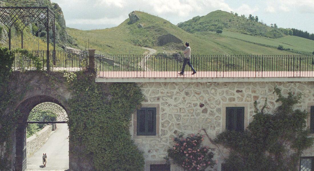 monte-alburchia-olio-biologico-sicilia-23