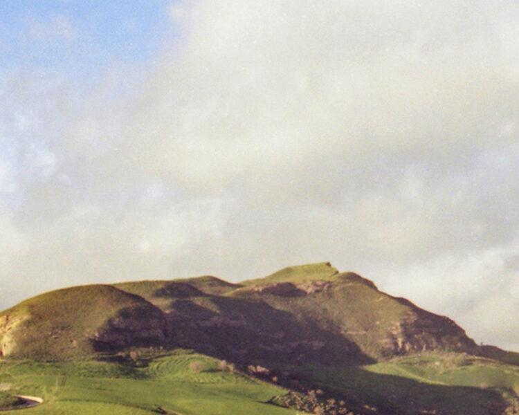 monte-alburchia-olio-biologico-sicilia-25