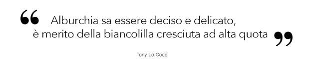 toni-quote-it